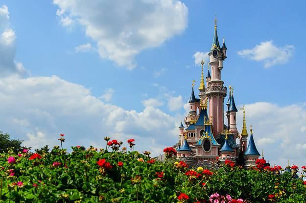 essays council feedback Descriptive Essay About Disneyland